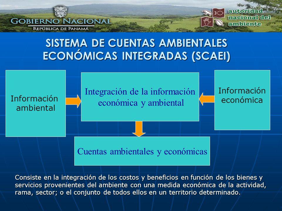 Información ambiental Integración de la información económica y ambiental Información económica Cuentas ambientales y económicas SISTEMA DE CUENTAS AM