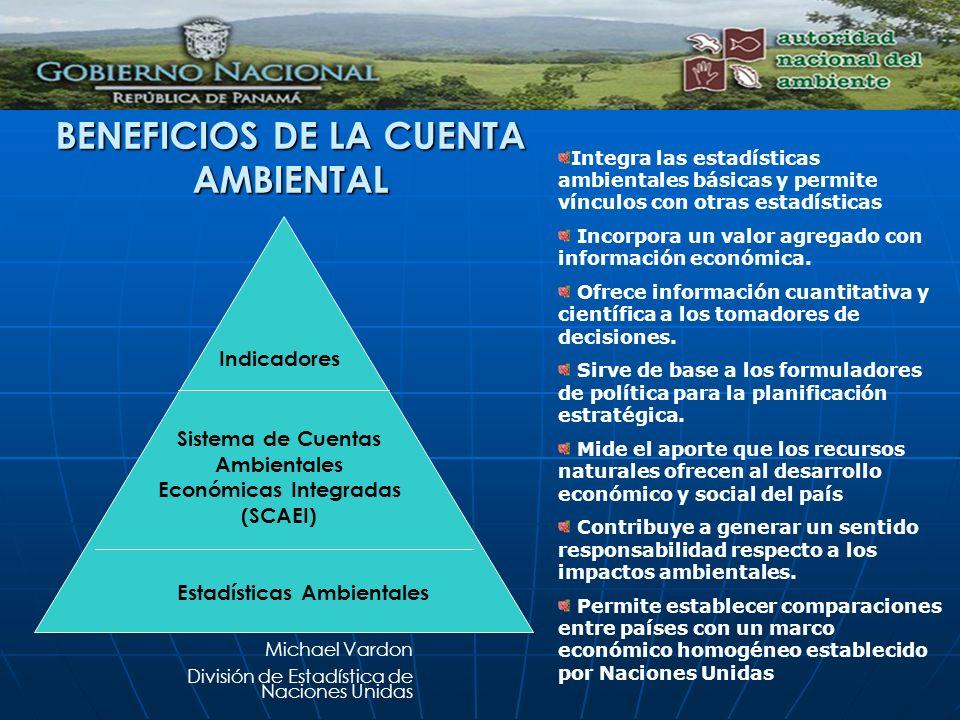 BENEFICIOS DE LA CUENTA AMBIENTAL Estadísticas Ambientales Sistema de Cuentas Ambientales Económicas Integradas (SCAEI) Indicadores Michael Vardon Div