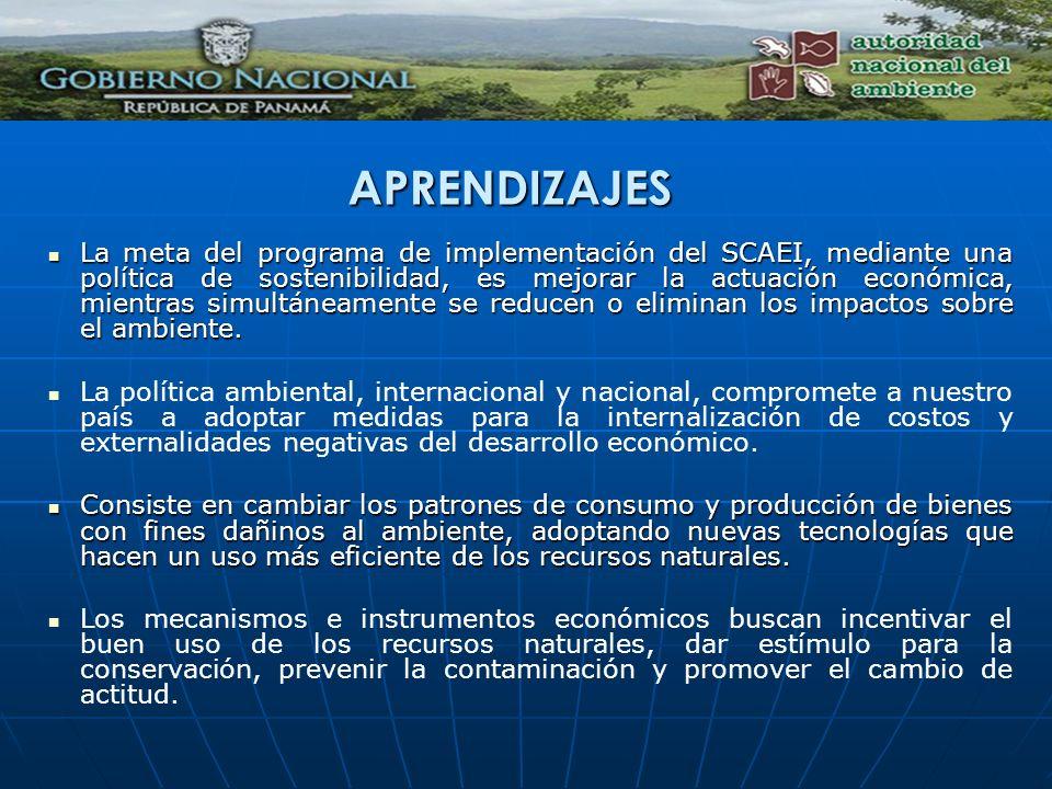 APRENDIZAJES La meta del programa de implementación del SCAEI, mediante una política de sostenibilidad, es mejorar la actuación económica, mientras si