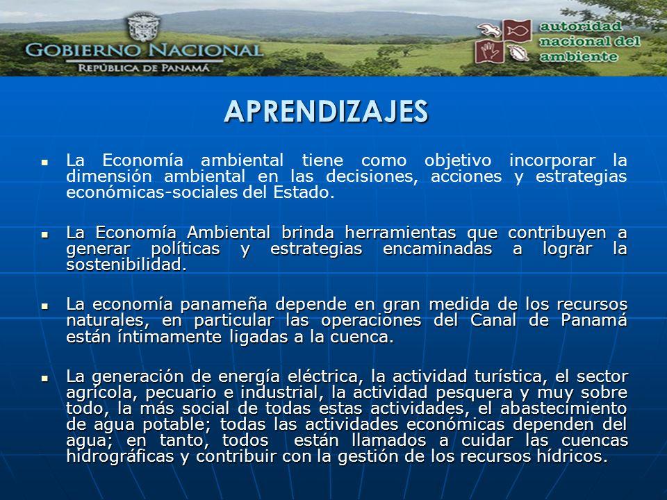 La Economía ambiental tiene como objetivo incorporar la dimensión ambiental en las decisiones, acciones y estrategias económicas-sociales del Estado.