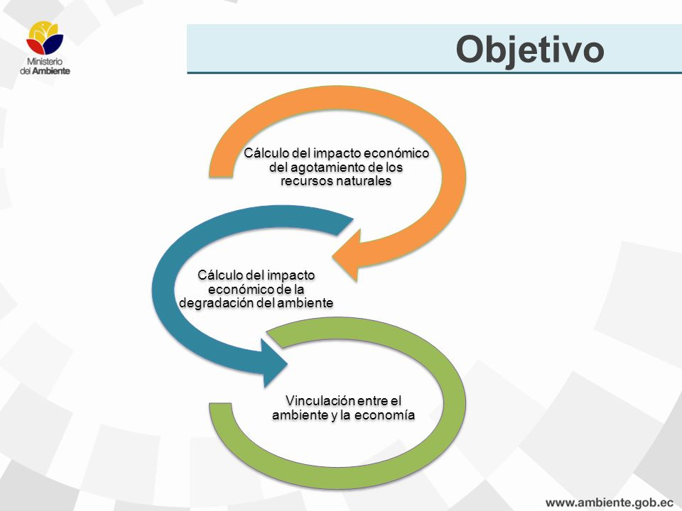Objetivo Cálculo del impacto económico del agotamiento de los recursos naturales Cálculo del impacto económico de la degradación del ambiente Vinculac