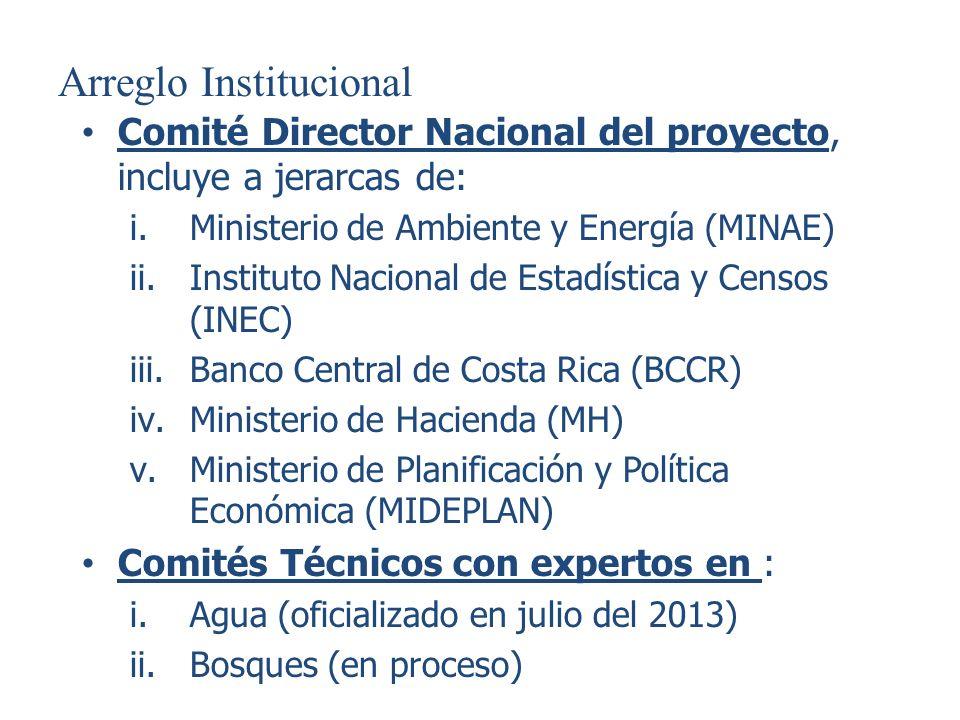 Arreglo Institucional Comité Director Nacional del proyecto, incluye a jerarcas de: i.Ministerio de Ambiente y Energía (MINAE) ii.Instituto Nacional d