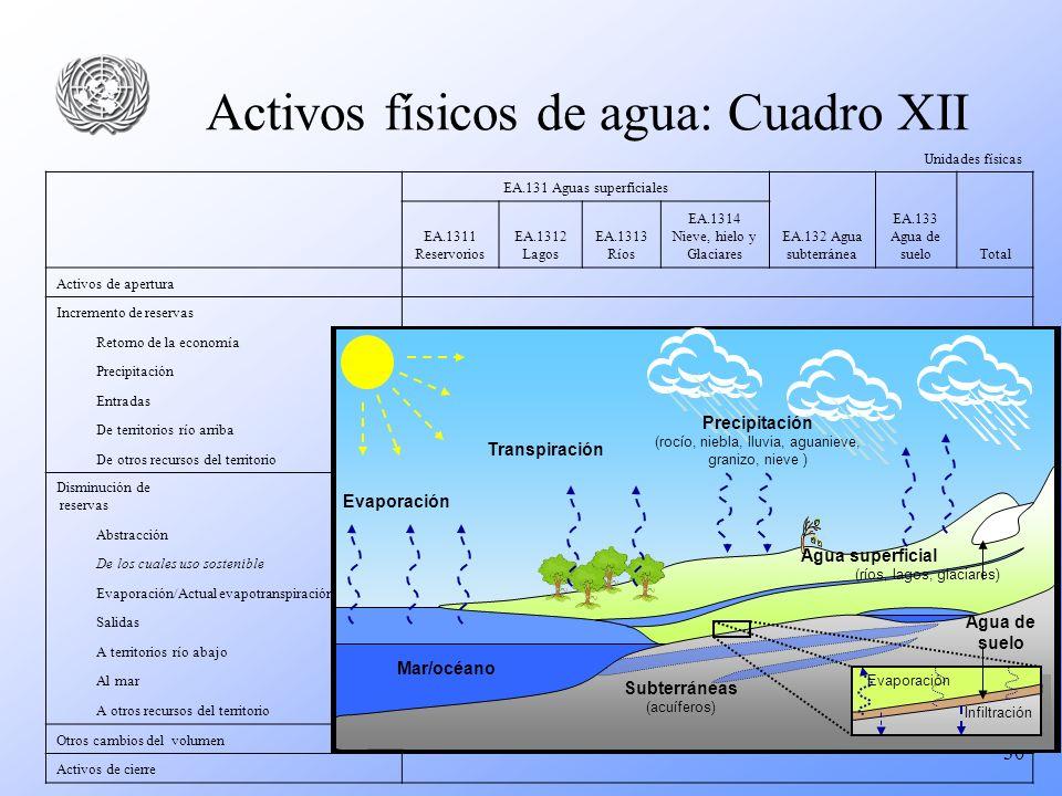 30 Activos físicos de agua: Cuadro XII Unidades físicas EA.131 Aguas superficiales EA.132 Agua subterránea EA.133 Agua de sueloTotal EA.1311 Reservori