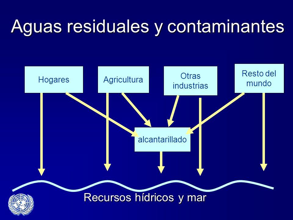 Aguas residuales y contaminantes alcantarillado Otras industrias AgriculturaHogares Resto del mundo Recursos hídricos y mar