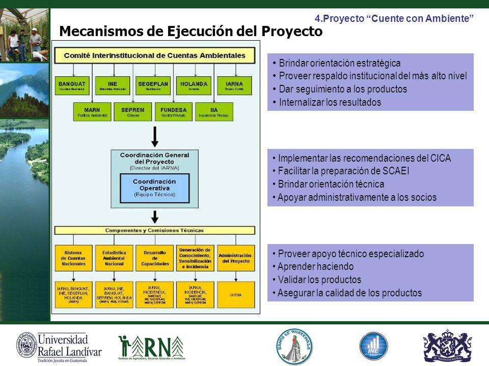 Mecanismos de Ejecución del Proyecto Brindar orientación estratégica Proveer respaldo institucional del más alto nivel Dar seguimiento a los productos