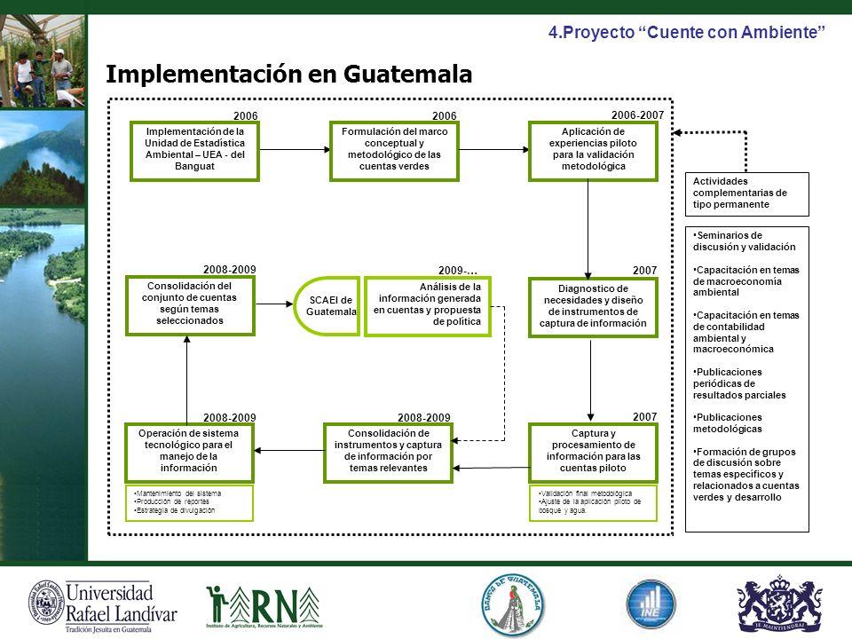 Diagnostico de necesidades y diseño de instrumentos de captura de información Implementación de la Unidad de Estadística Ambiental – UEA - del Banguat