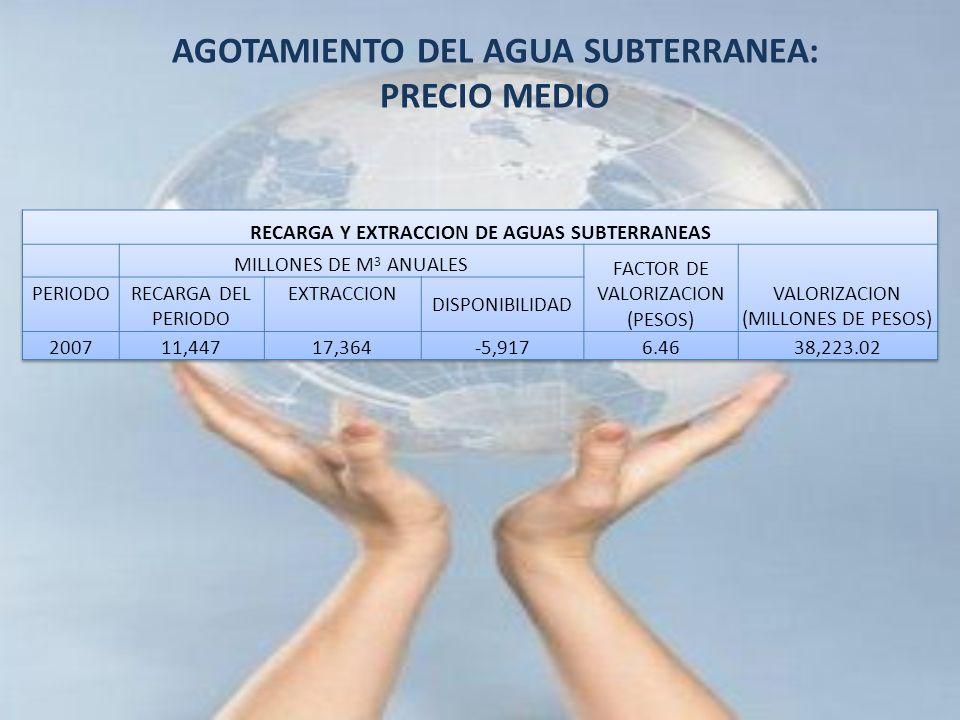 AGOTAMIENTO DEL AGUA SUBTERRANEA: PRECIO MEDIO