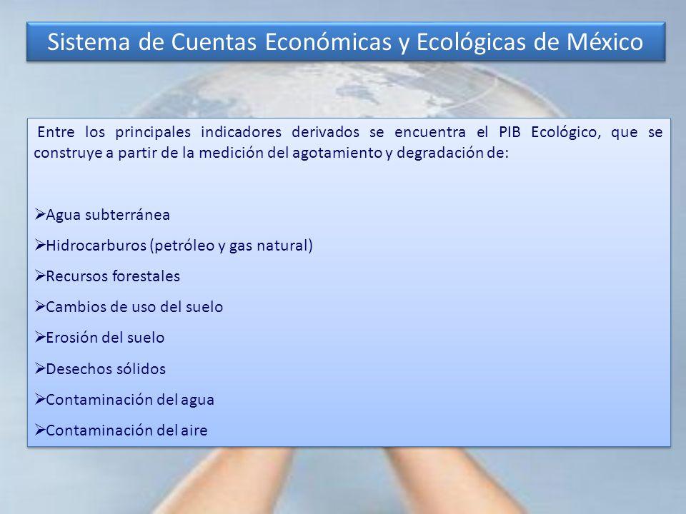 Entre los principales indicadores derivados se encuentra el PIB Ecológico, que se construye a partir de la medición del agotamiento y degradación de: