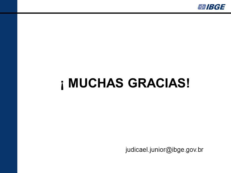 ¡ MUCHAS GRACIAS! judicael.junior@ibge.gov.br