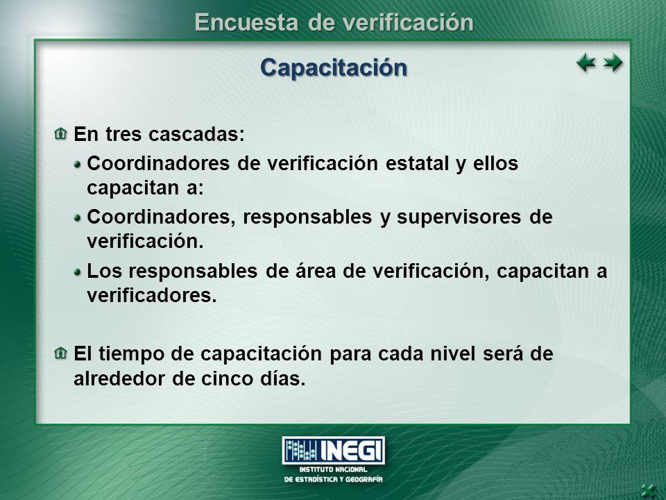 Capacitación En tres cascadas: Coordinadores de verificación estatal y ellos capacitan a: Coordinadores, responsables y supervisores de verificación.
