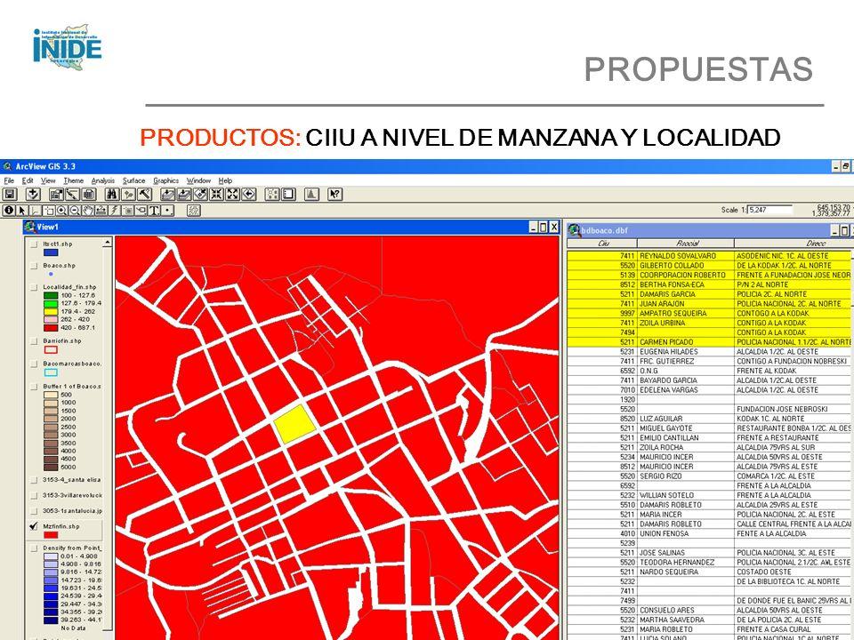 PROPUESTAS PRODUCTOS: CIIU A NIVEL DE MANZANA Y LOCALIDAD