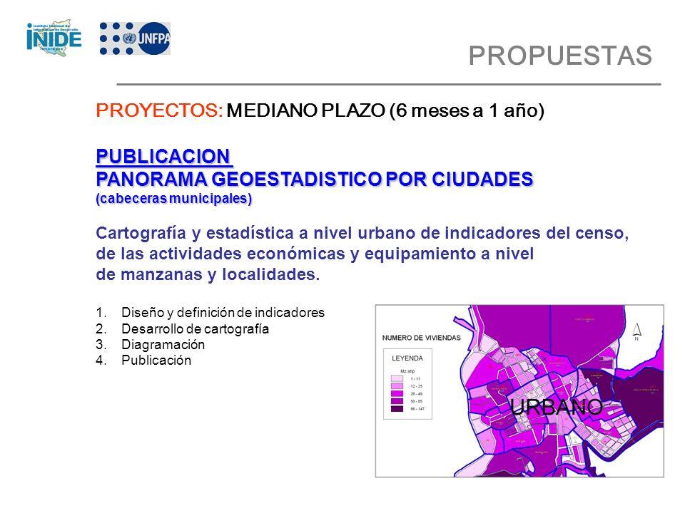 PROPUESTAS PROYECTOS: MEDIANO PLAZO (6 meses a 1 año) PUBLICACION PANORAMA GEOESTADISTICO POR CIUDADES (cabeceras municipales) Cartografía y estadística a nivel urbano de indicadores del censo, de las actividades económicas y equipamiento a nivel de manzanas y localidades.