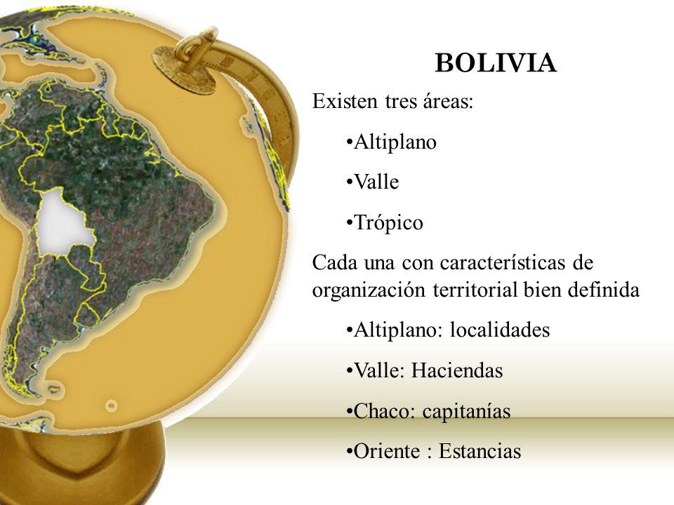 BOLIVIA Existen tres áreas: Altiplano Valle Trópico Cada una con características de organización territorial bien definida Altiplano: localidades Vall