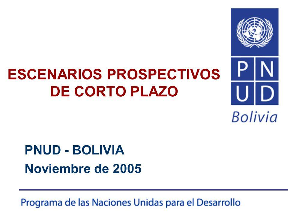 ESCENARIOS PROSPECTIVOS DE CORTO PLAZO PNUD - BOLIVIA Noviembre de 2005