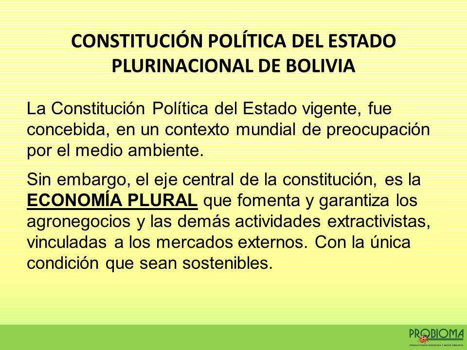 La Constitución Política del Estado vigente, fue concebida, en un contexto mundial de preocupación por el medio ambiente. Sin embargo, el eje central