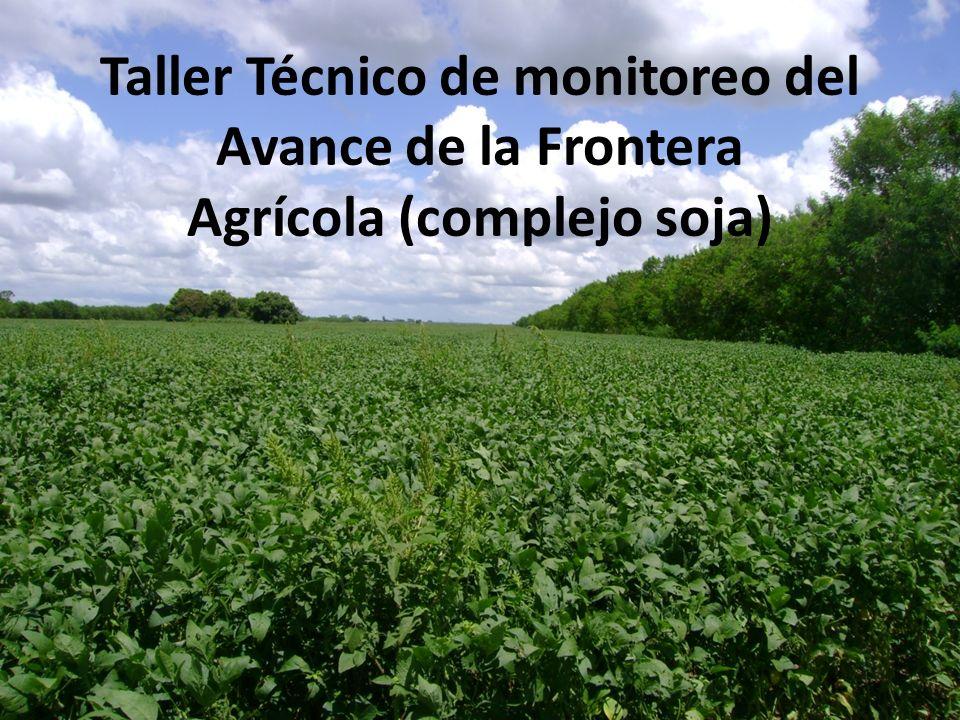 Taller Técnico de monitoreo del Avance de la Frontera Agrícola (complejo soja)