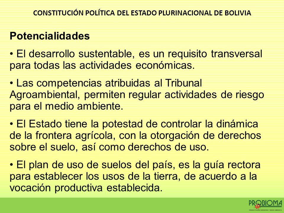 Potencialidades El desarrollo sustentable, es un requisito transversal para todas las actividades económicas. Las competencias atribuidas al Tribunal