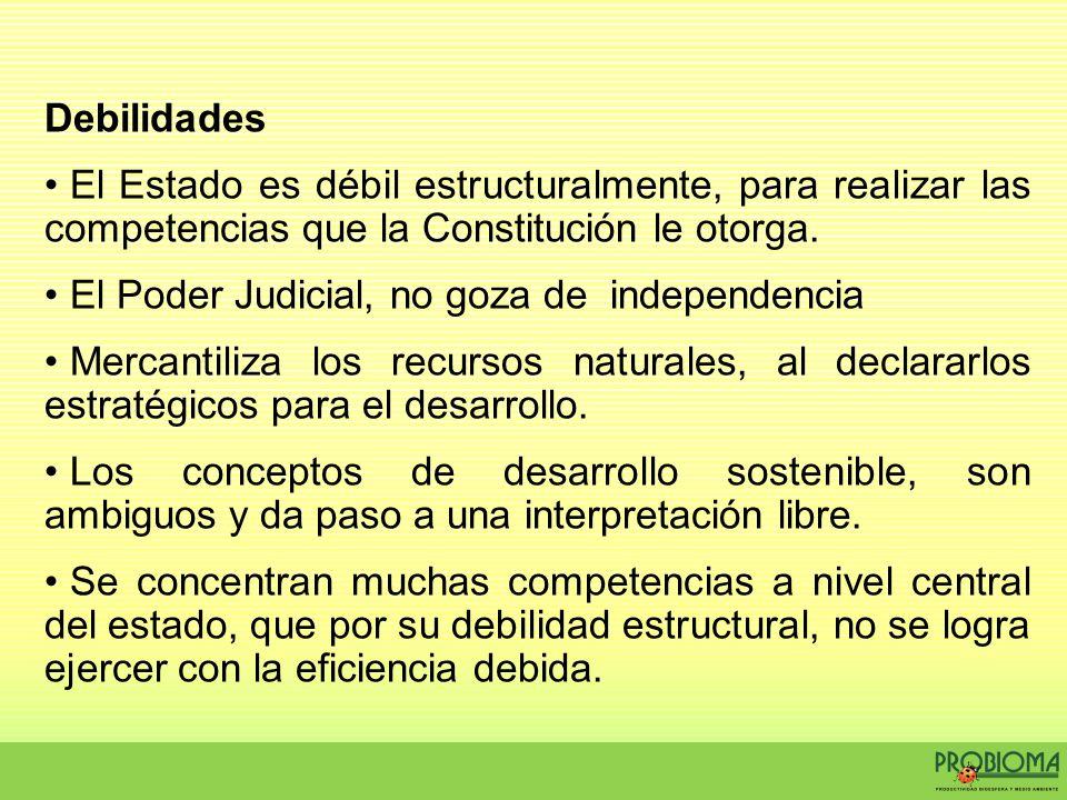 Debilidades El Estado es débil estructuralmente, para realizar las competencias que la Constitución le otorga. El Poder Judicial, no goza de independe