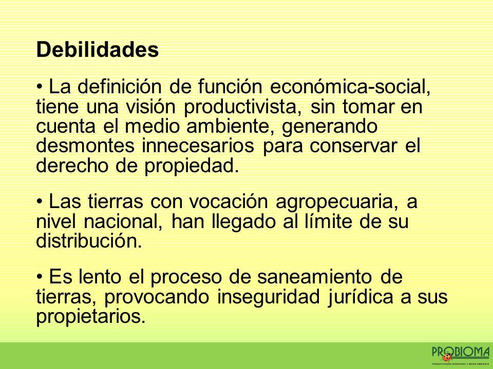Debilidades La definición de función económica-social, tiene una visión productivista, sin tomar en cuenta el medio ambiente, generando desmontes inne