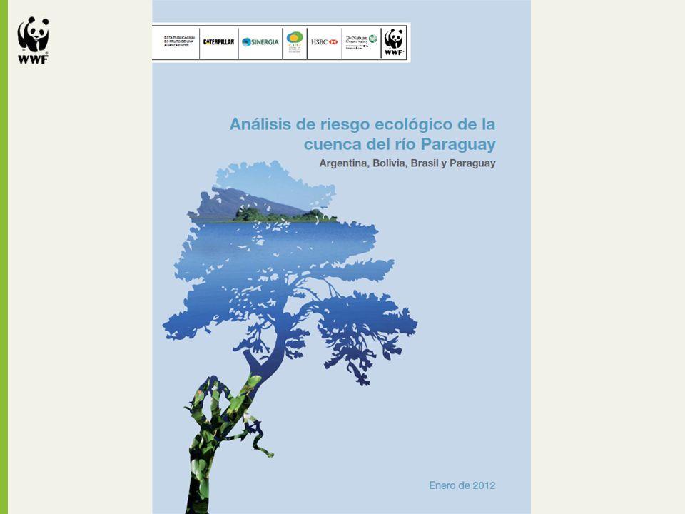 Este análisis es el primer paso para determinar la vulnerabilidad regional de la cuenca del río Paraguay frente a los cambios climáticos.