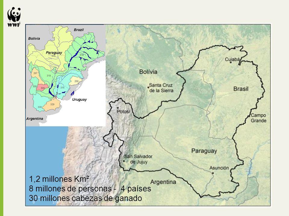 1,2 millones Km² 8 millones de personas - 4 países 30 millones cabezas de ganado