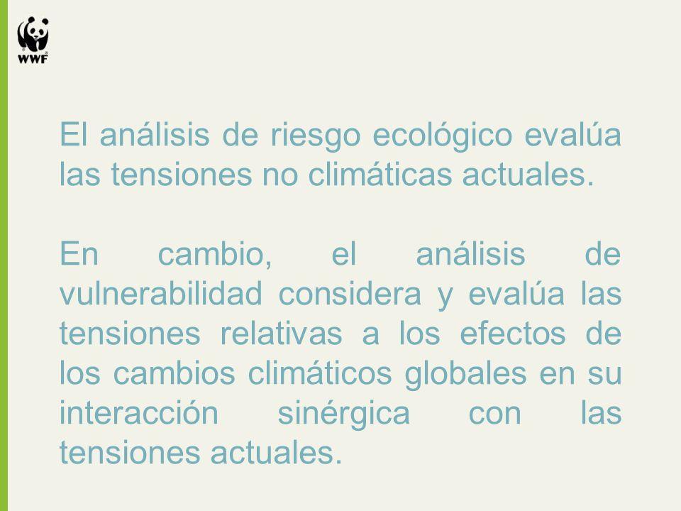 El análisis de riesgo ecológico evalúa las tensiones no climáticas actuales. En cambio, el análisis de vulnerabilidad considera y evalúa las tensiones