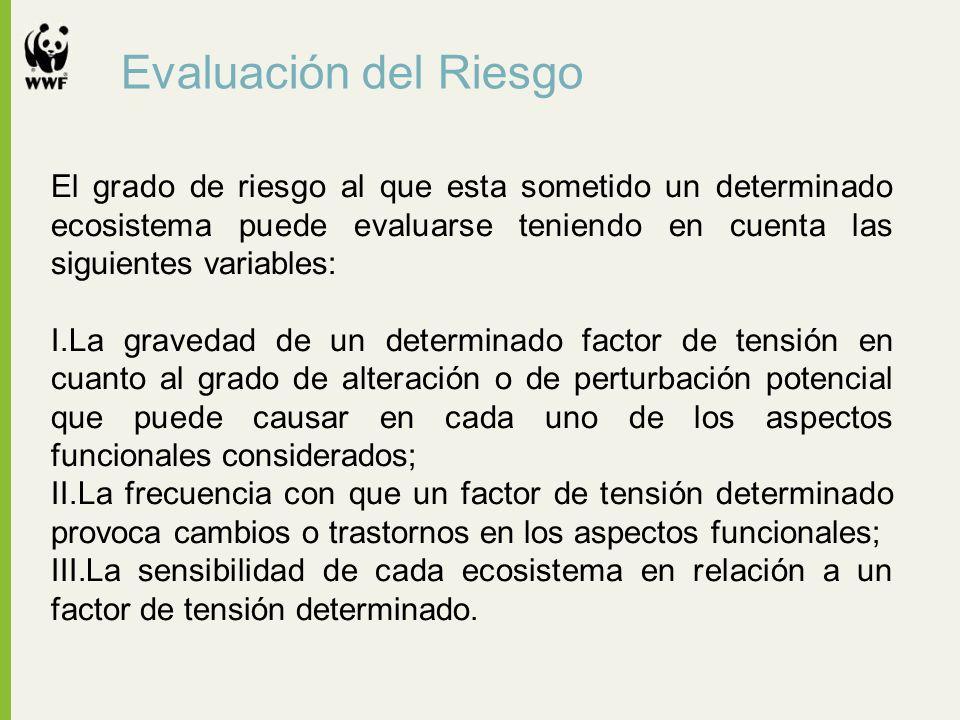 Evaluación del Riesgo El grado de riesgo al que esta sometido un determinado ecosistema puede evaluarse teniendo en cuenta las siguientes variables: I