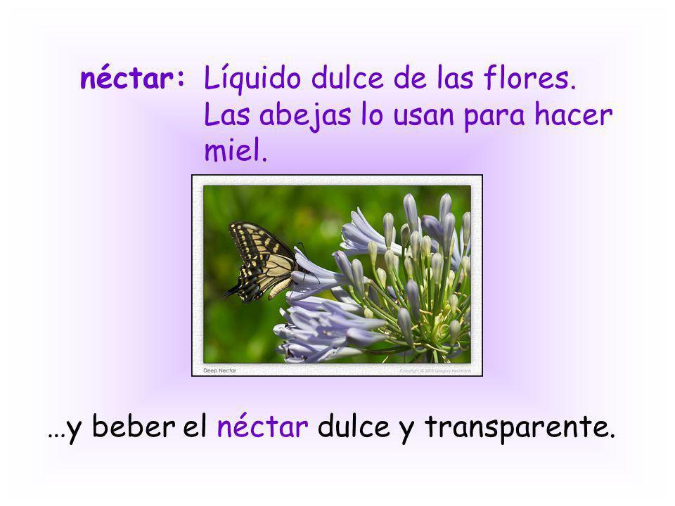 néctar:Líquido dulce de las flores. Las abejas lo usan para hacer miel. …y beber el néctar dulce y transparente.