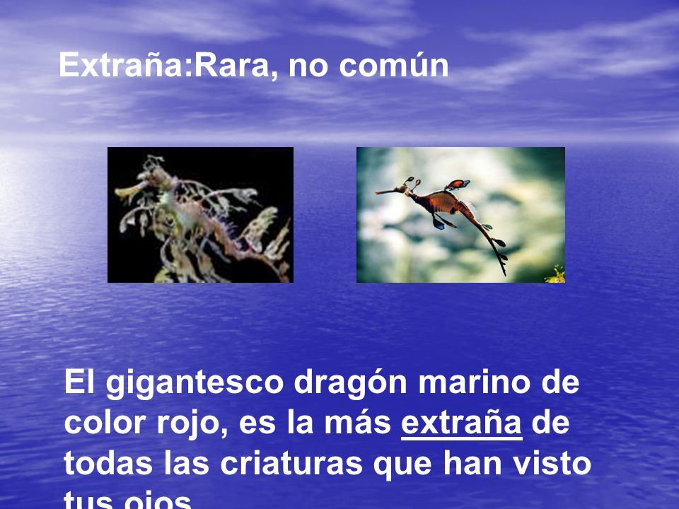 Extraña:Rara, no común El gigantesco dragón marino de color rojo, es la más extraña de todas las criaturas que han visto tus ojos…
