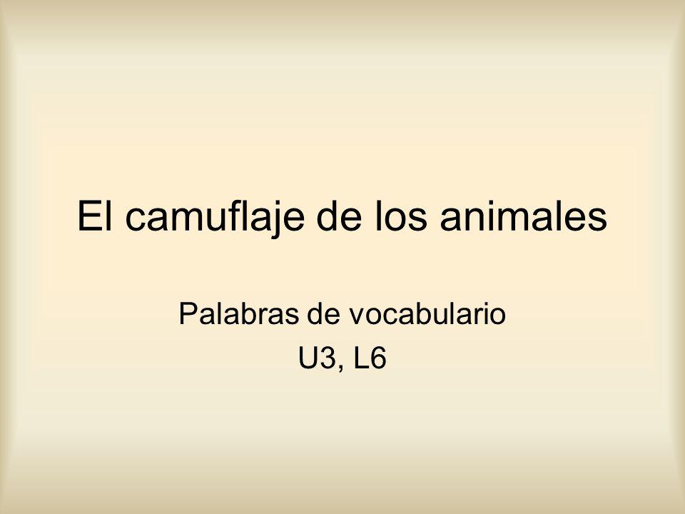 El camuflaje de los animales Palabras de vocabulario U3, L6