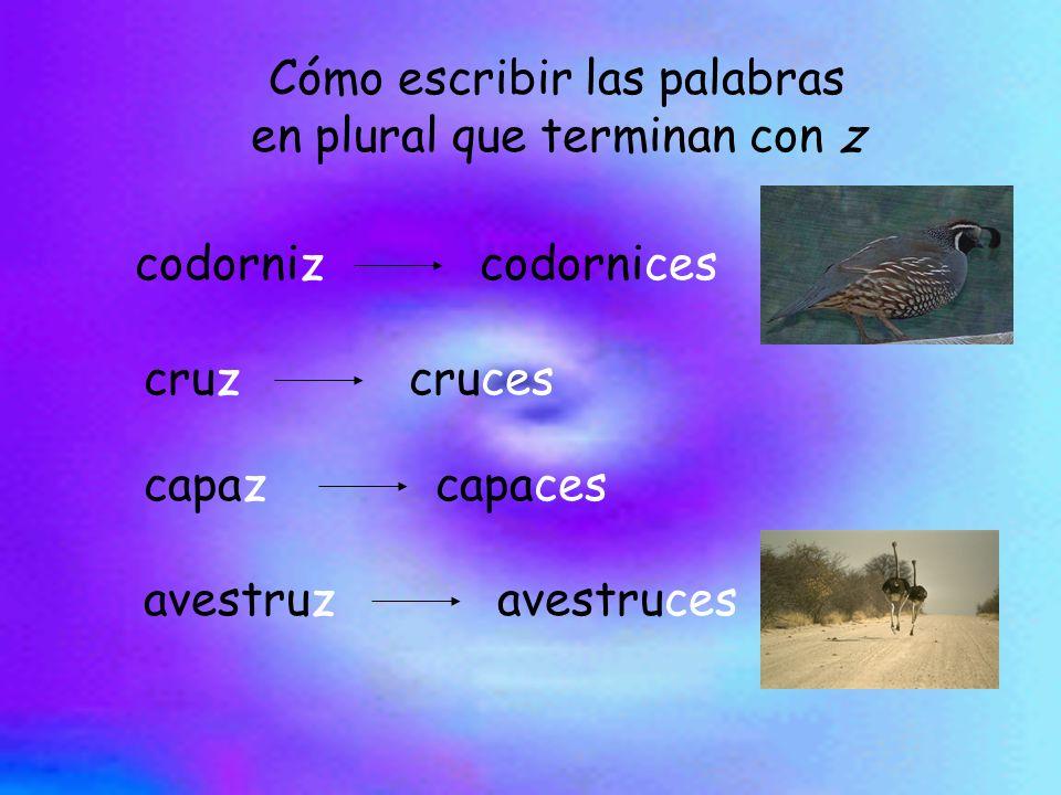 Cómo escribir las palabras en plural que terminan con z codornizcodornices cruzcruces capazcapaces avestruzavestruces