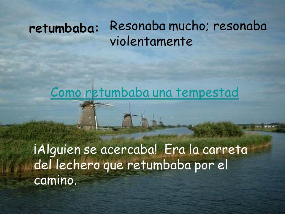retumbaba: Resonaba mucho; resonaba violentamente ¡Alguien se acercaba.