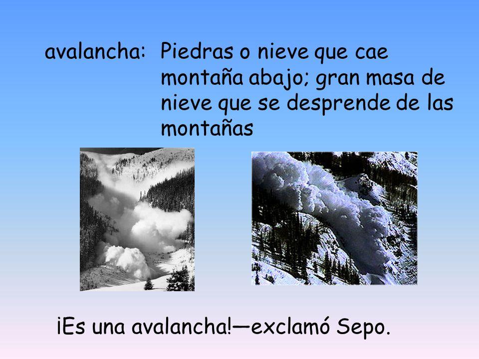 avalancha:Piedras o nieve que cae montaña abajo; gran masa de nieve que se desprende de las montañas ¡Es una avalancha!exclamó Sepo.