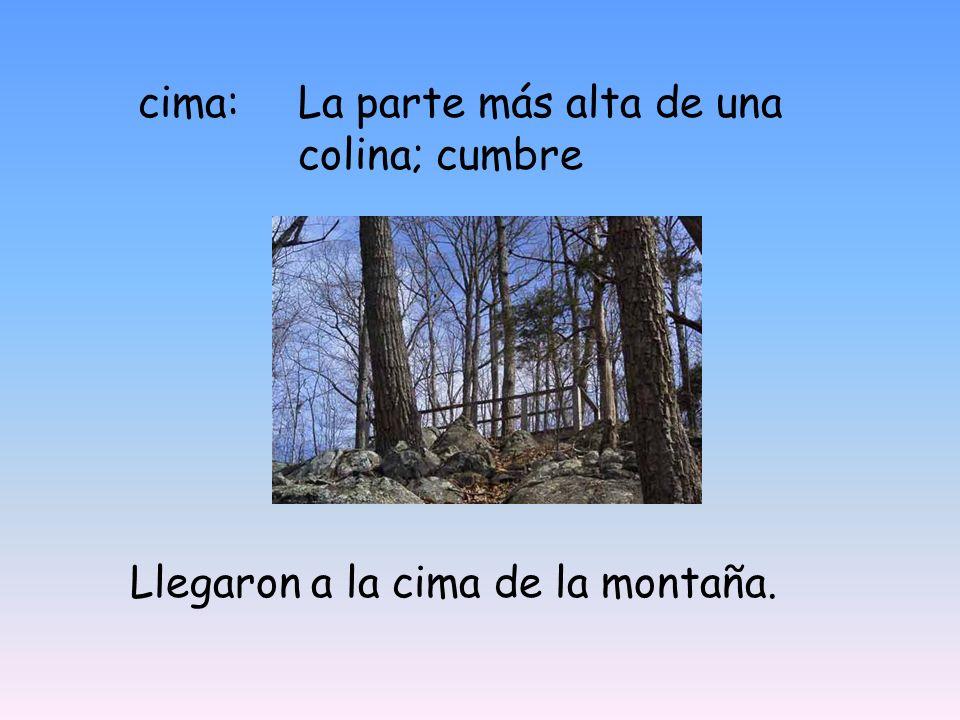 cima:La parte más alta de una colina; cumbre Llegaron a la cima de la montaña.