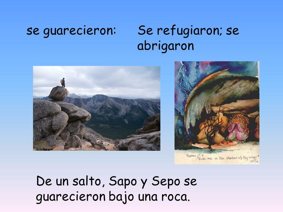 se guarecieron:Se refugiaron; se abrigaron De un salto, Sapo y Sepo se guarecieron bajo una roca.