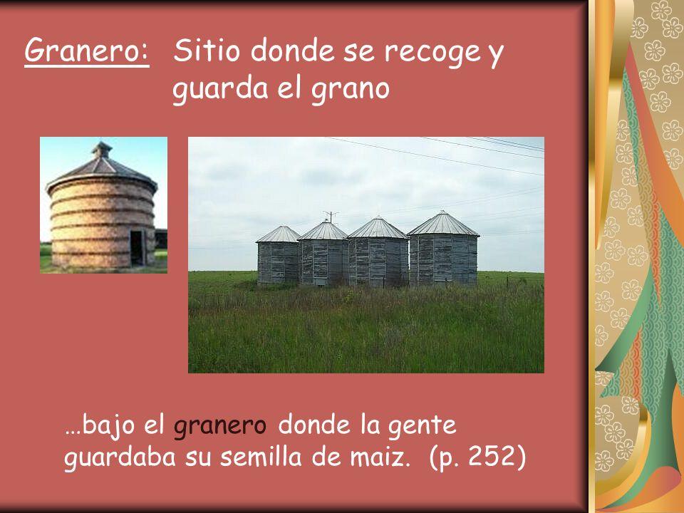Granero: Sitio donde se recoge y guarda el grano …bajo el granero donde la gente guardaba su semilla de maiz.