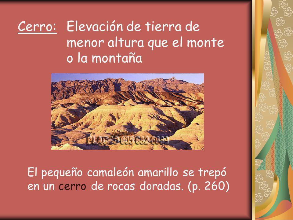 Cerro: Elevación de tierra de menor altura que el monte o la montaña El pequeño camaleón amarillo se trepó en un cerro de rocas doradas.