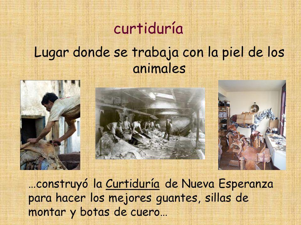 curtiduría Lugar donde se trabaja con la piel de los animales …construyó la Curtiduría de Nueva Esperanza para hacer los mejores guantes, sillas de montar y botas de cuero…
