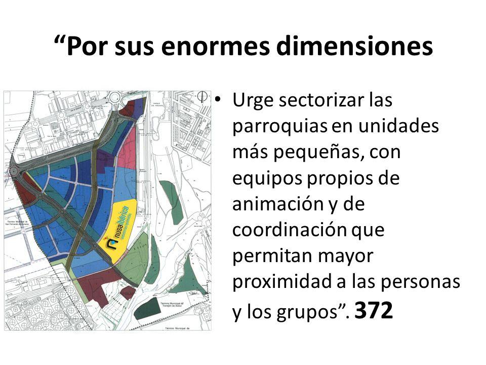 Por sus enormes dimensiones Urge sectorizar las parroquias en unidades más pequeñas, con equipos propios de animación y de coordinación que permitan m