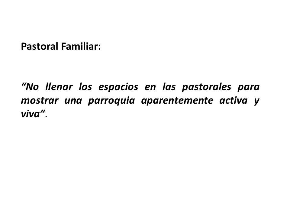 Pastoral Familiar: No llenar los espacios en las pastorales para mostrar una parroquia aparentemente activa y viva.