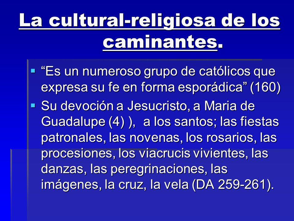 La cultural-religiosa de los caminantes. Es un numeroso grupo de católicos que expresa su fe en forma esporádica (160) Es un numeroso grupo de católic