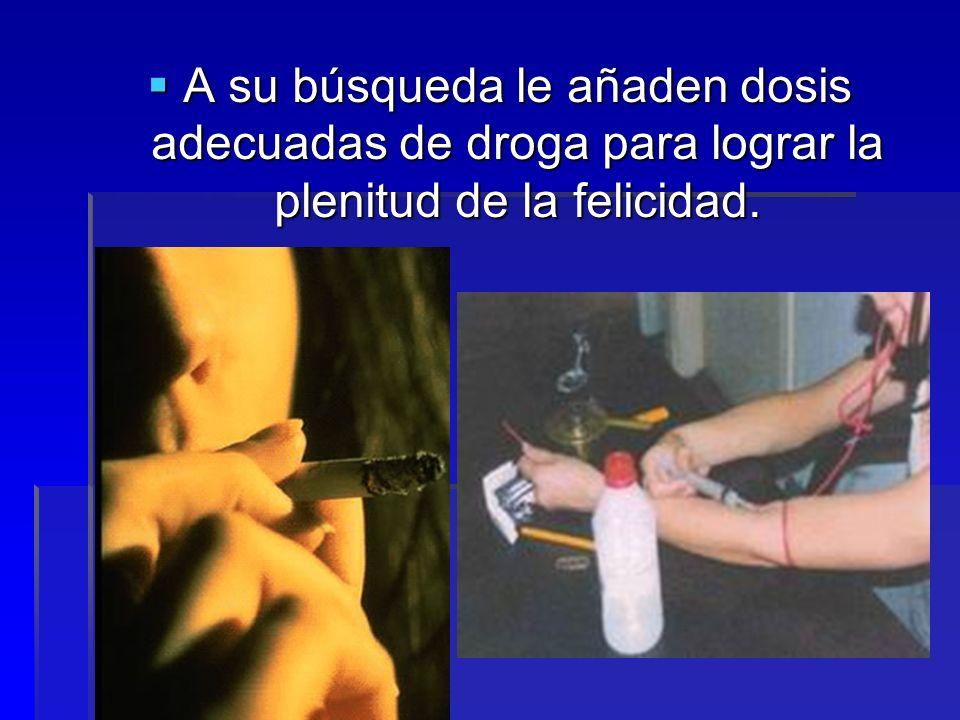 A su búsqueda le añaden dosis adecuadas de droga para lograr la plenitud de la felicidad. A su búsqueda le añaden dosis adecuadas de droga para lograr