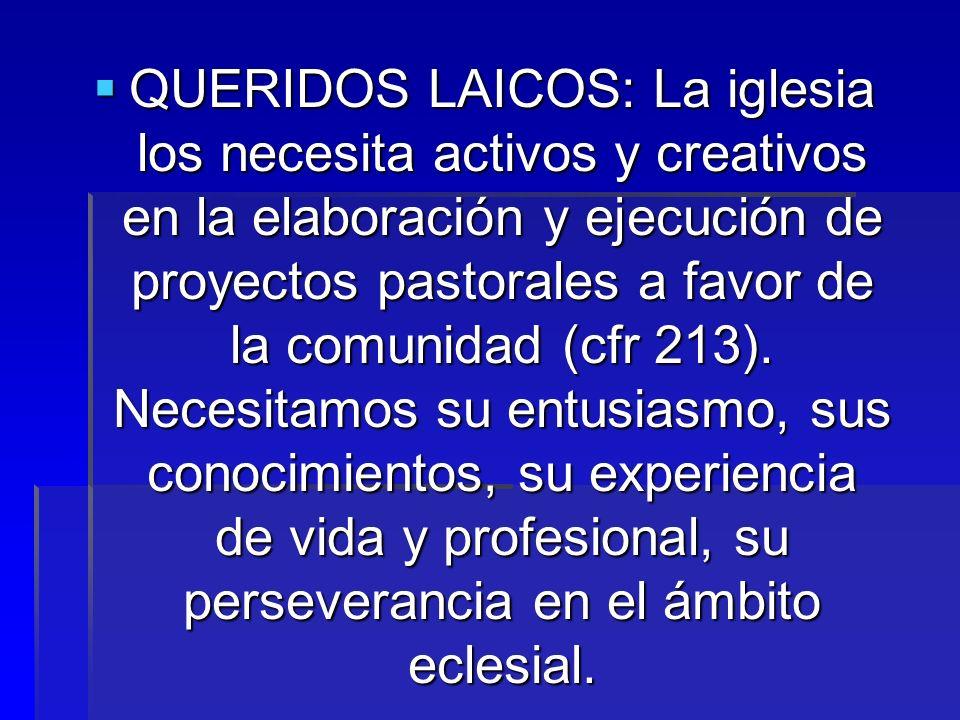 QUERIDOS LAICOS: La iglesia los necesita activos y creativos en la elaboración y ejecución de proyectos pastorales a favor de la comunidad (cfr 213).