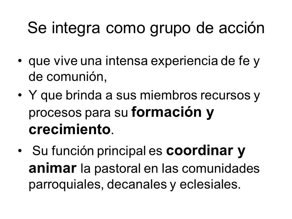 1.Aplicar la planificación pastoral 2.Formar y fortalecer los equipos 3.Formar a sus agentes 4.Impulsar la comunión eclesial 5.Participar en la misión permanente