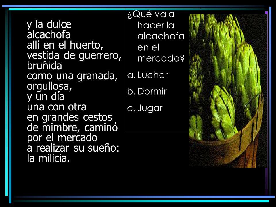 y la dulce alcachofa allí en el huerto, vestida de guerrero, bruñida como una granada, orgullosa, y un día una con otra en grandes cestos de mimbre, c