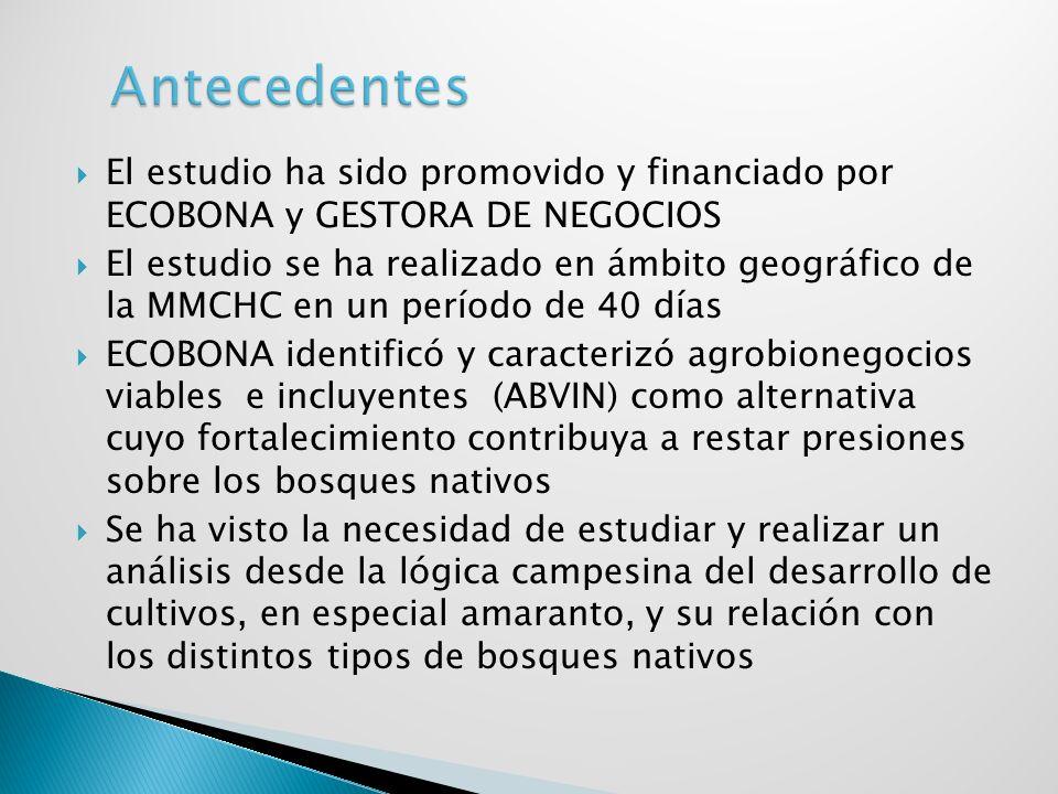 Caracterizar las estrategias campesinas para el avance de la frontera agrícola y su relación con diferentes tipos de bosques andinos en 4 municipios de la Mancomunidad de Municipalidades de Chuquisaca Centro.