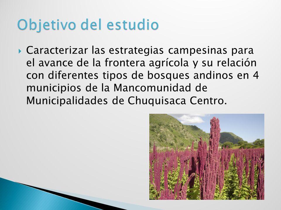 Caracterizar las estrategias campesinas para el avance de la frontera agrícola y su relación con diferentes tipos de bosques andinos en 4 municipios d