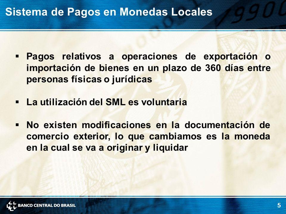 5 Pagos relativos a operaciones de exportación o importación de bienes en un plazo de 360 días entre personas físicas o jurídicas La utilización del S