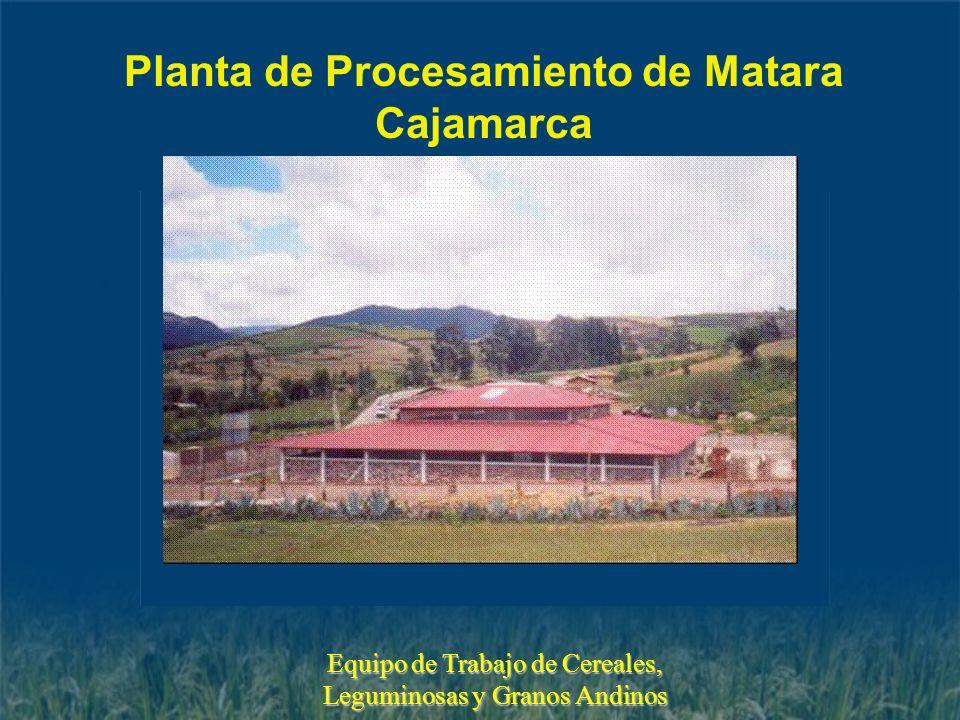 Planta de Procesamiento de Matara Cajamarca Equipo de Trabajo de Cereales, Leguminosas y Granos Andinos
