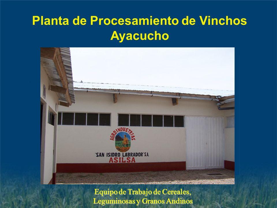 Planta de Procesamiento de Vinchos Ayacucho Equipo de Trabajo de Cereales, Leguminosas y Granos Andinos